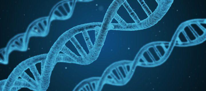 Eine Stunde Bewegung in der Woche kann die Gene überlisten