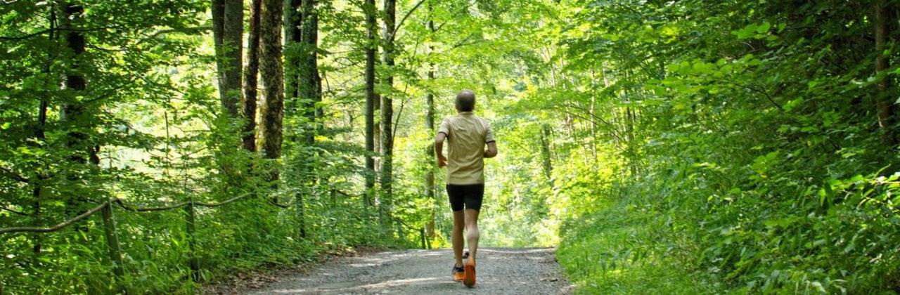 Frühes Tageslicht hat positive Effekte auf BMI